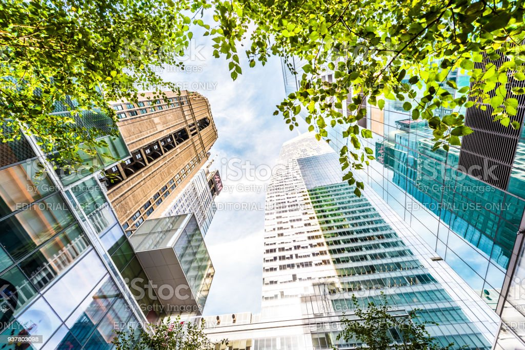 Manhattan NYC Verizon Plaza green urban park, buildings of midtown by Times Square, looking up sky isolated, skyscrapers, trees stock photo