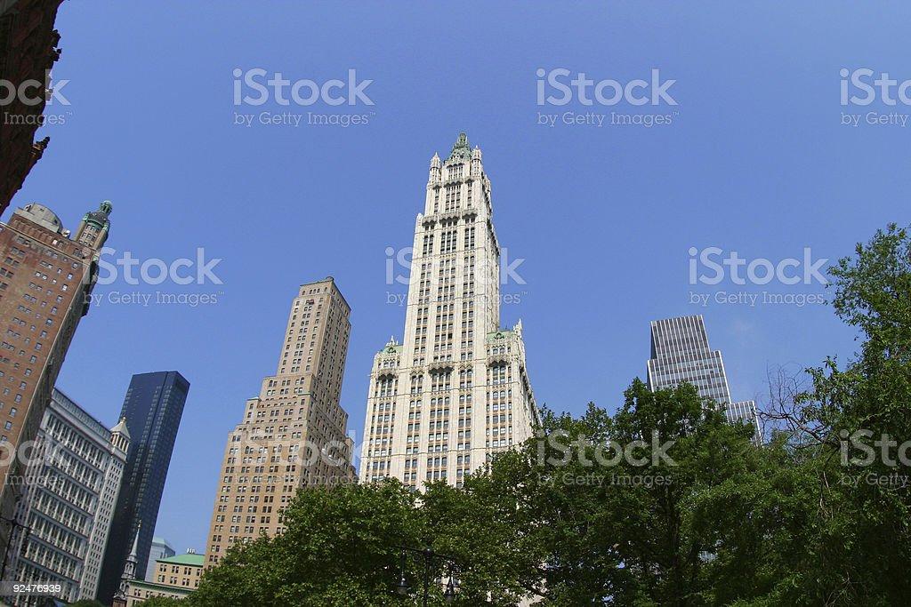 Manhattan wideangle royalty-free stock photo