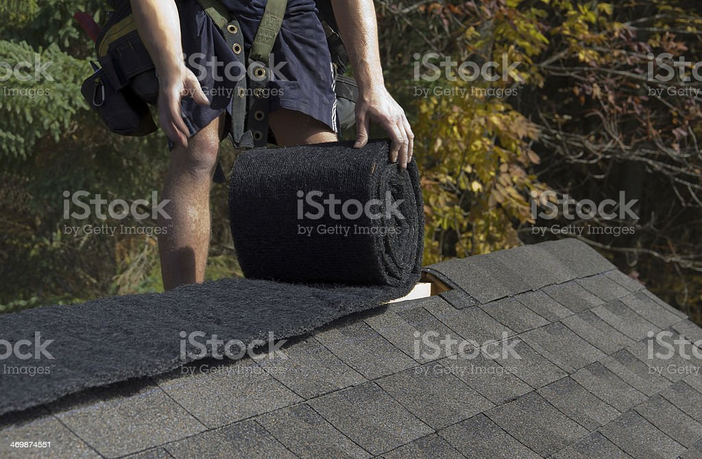 Manic shorts on shingled roof installing a ridge vent. stock photo