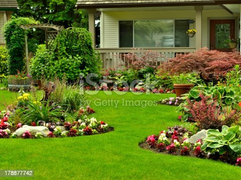 A beautifully arranged flower garden and residential yard.