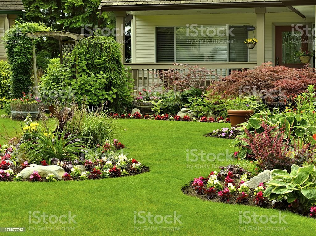 Manicured Yard stock photo