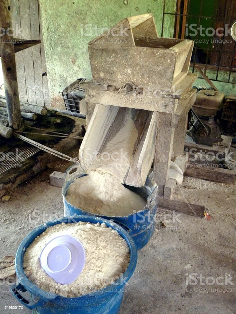 Manihot esculenta flour mill,Cassava flour stock photo