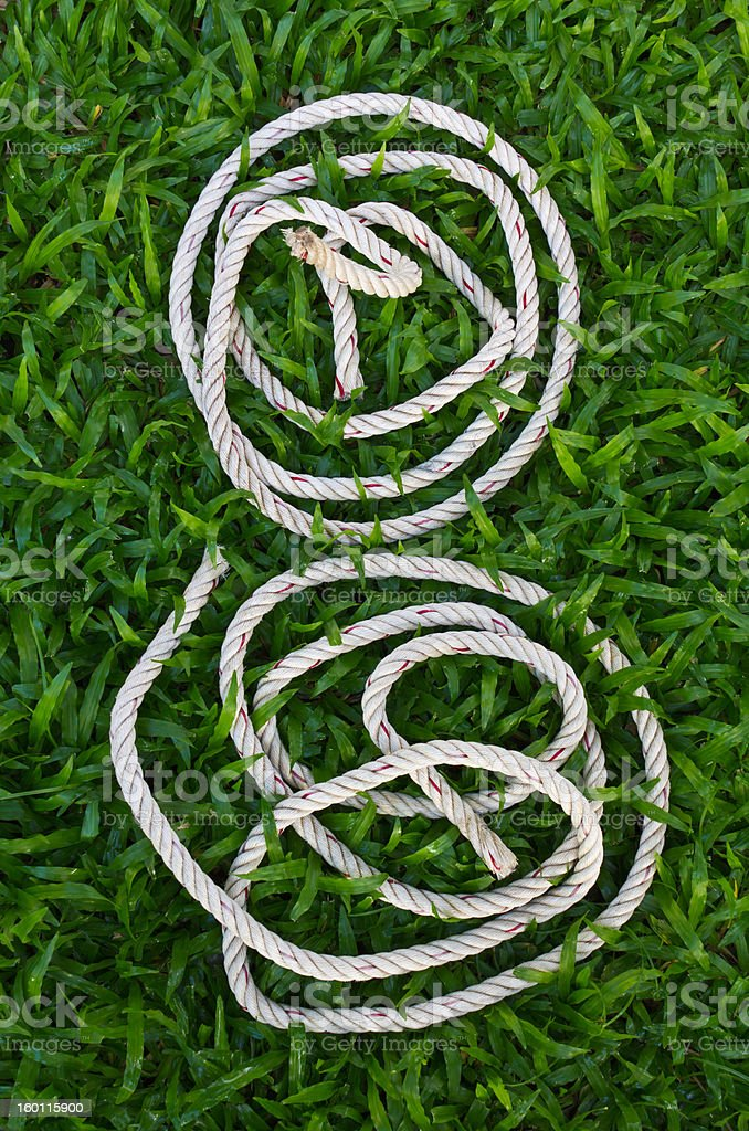 Manila rope coiled white face like. royalty-free stock photo