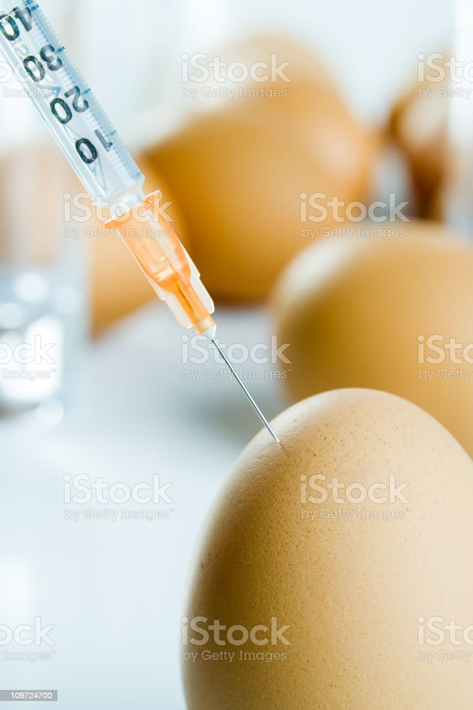 Manipulated eggs royalty-free stock photo