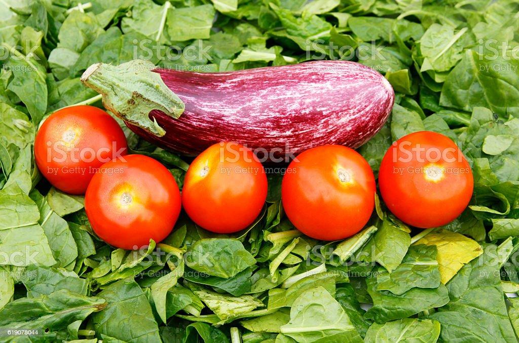 manjares stock photo