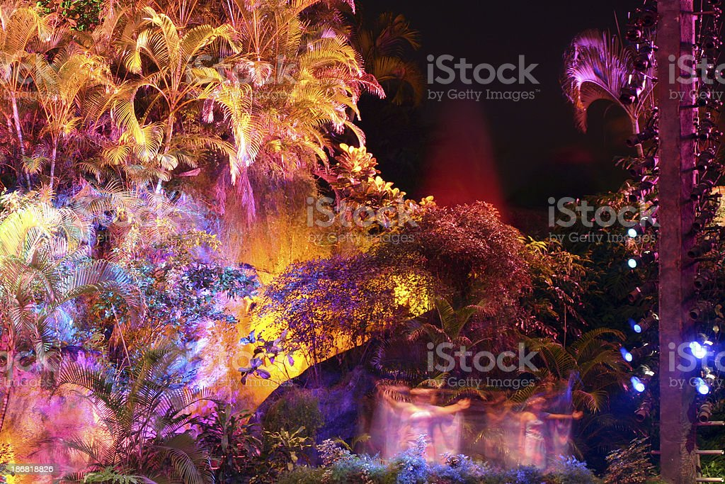 man-made forrest with beautiful lighting stock photo