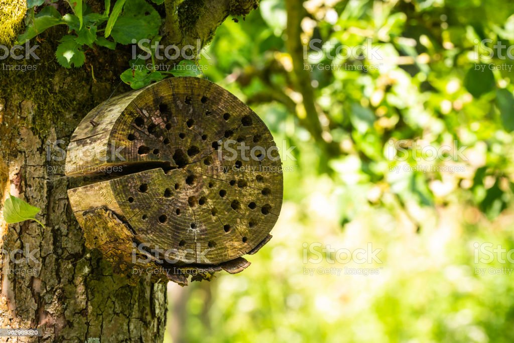 Man-made insect hotel in a green forest. A structure created from...