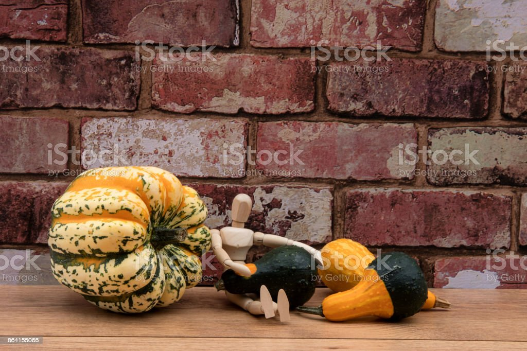 Mannequin sitting down with a gourd on its lap against a red brick wall. royalty-free stock photo