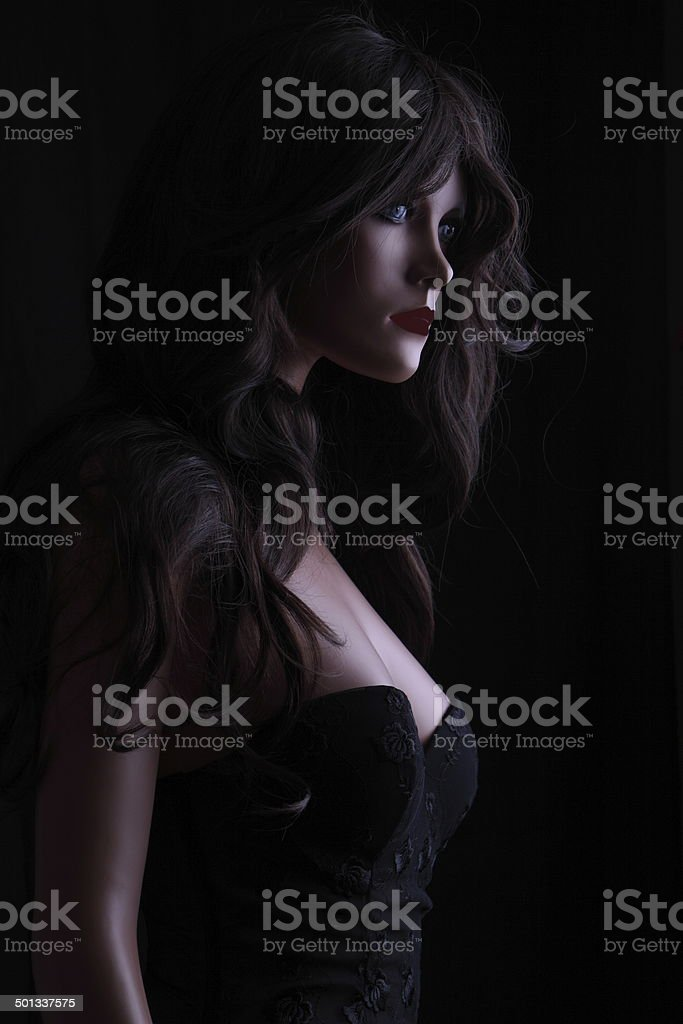 Schaufensterpuppe mit Corsage und Dessous stock photo