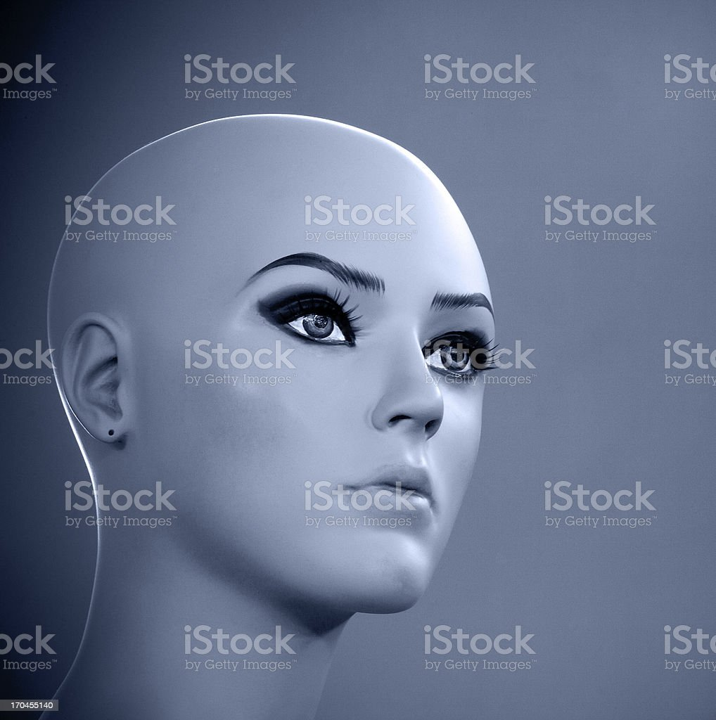 Mannequin's head royalty-free stock photo