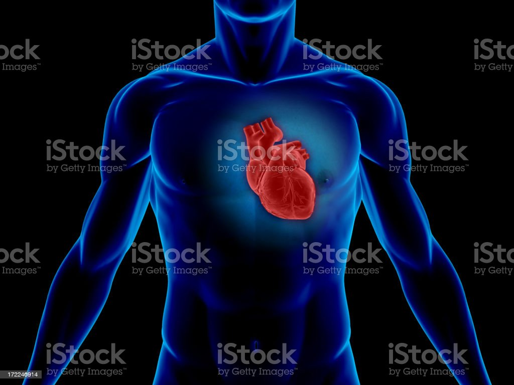 Man's blue body with his heart highlighted in red stock photo