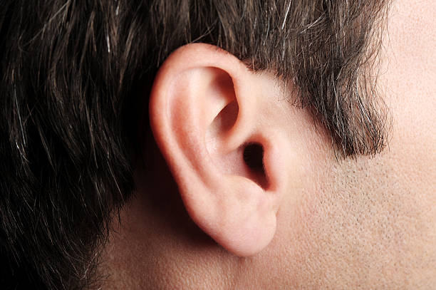 man's ear extreme close up - ear stock photos and pictures
