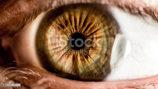 A close-up shot of a brown green eye of a man with high clarity