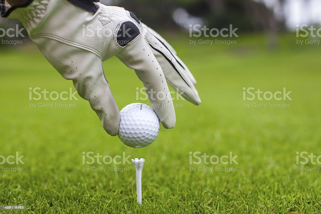 Man's Hand hold golf ball with tee on course stock photo
