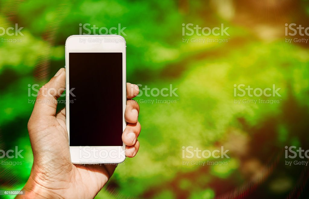 Man's hand hold smart phone in the garden foto stock royalty-free