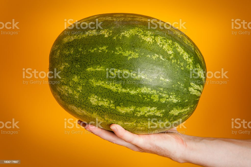 Man's Hand Holding a Whole Watermelon royalty-free stock photo