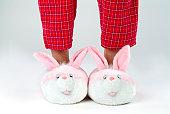 男性のウサギの足のスリッパ