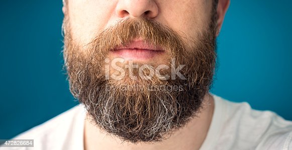istock Man's long beard with brown and gray hairs 472826684