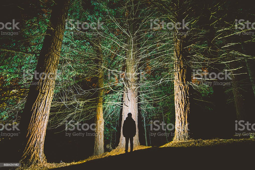 Man's silhouette at forest stock photo