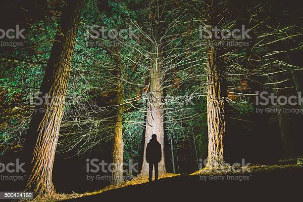Photo of Man's silhouette at forest