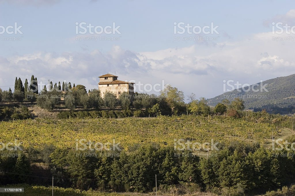 mansion over vineyard royalty-free stock photo