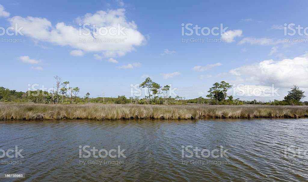 Manteo Wetlands stock photo