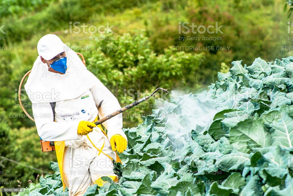 Borrifador de pesticidas manual - foto de acervo