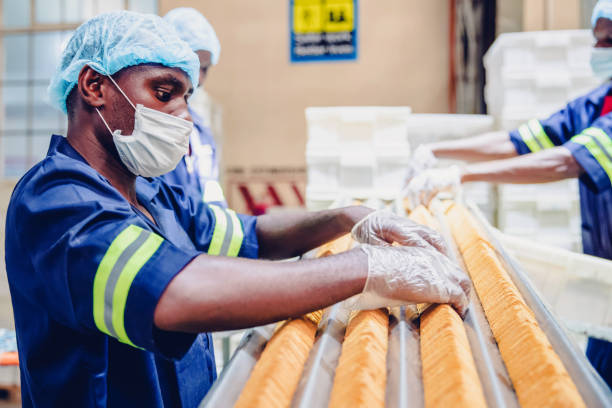 Manual workers on job at a food processing plant in Africa stock photo