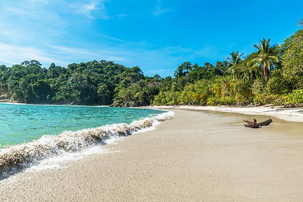 manuel antonio, costa rica - beautiful tropical beach - costa rica stockfoto's en -beelden