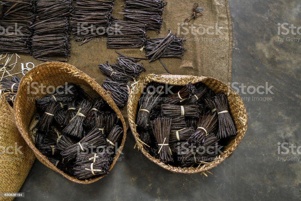 Fabrico de baunilha - foto de acervo