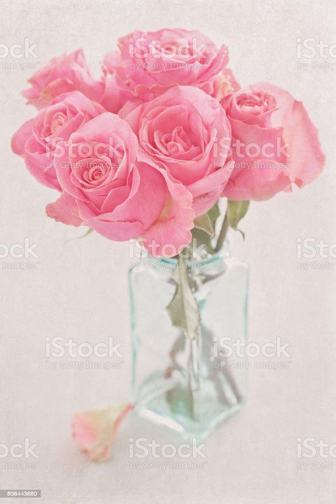 Many beautiful fresh pink roses. Lizenzfreies stock-foto