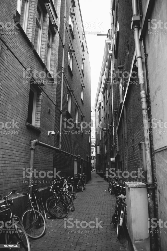 Many bicycles in a row on the street in Amsterdam, in Europe. Parking for bicycles. European style of life. A popular, healthy and eco-friendly means of transportation in Holland. Authentic. stock photo