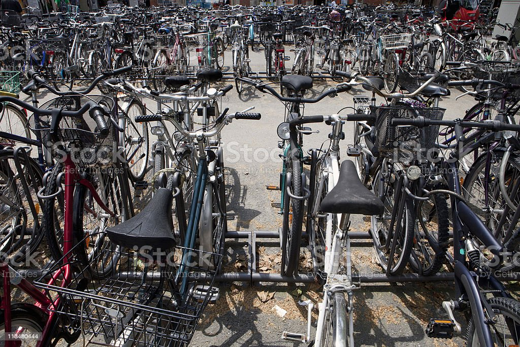 Many bicycles parked in a bicycle stand stock photo
