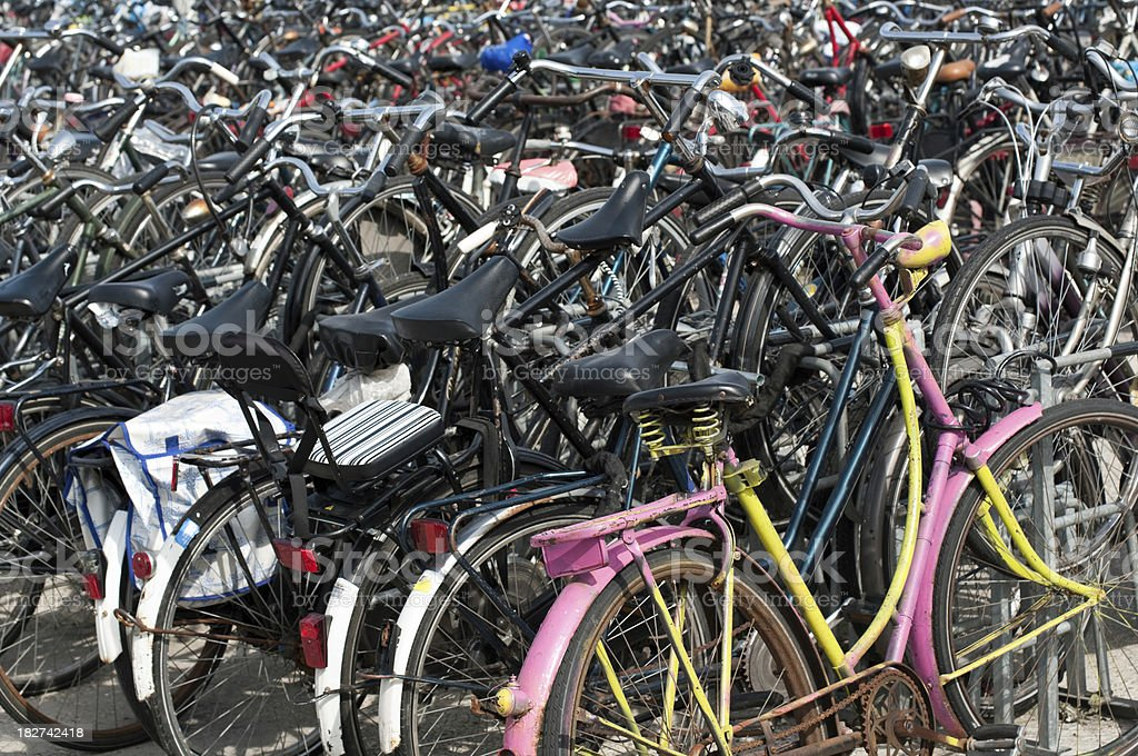 Many bicycles royalty-free stock photo