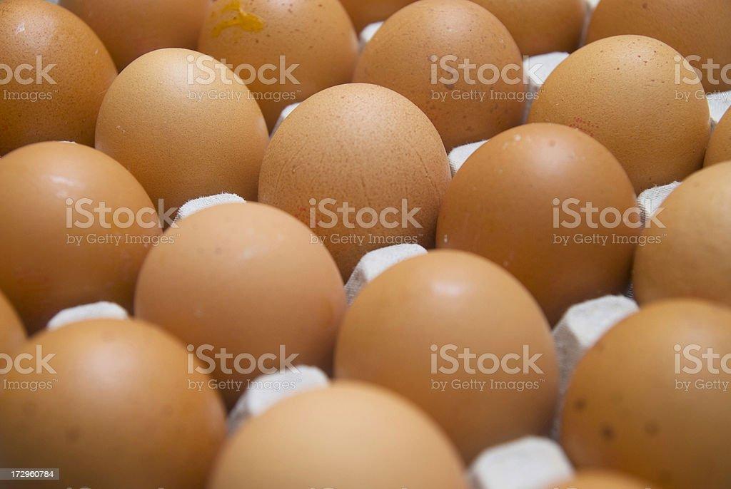 many bio brown eggs stock photo