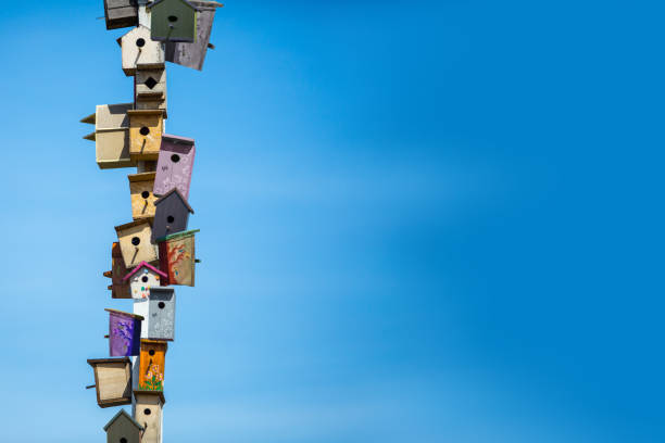 Many birdhouses over blue sky background stock photo