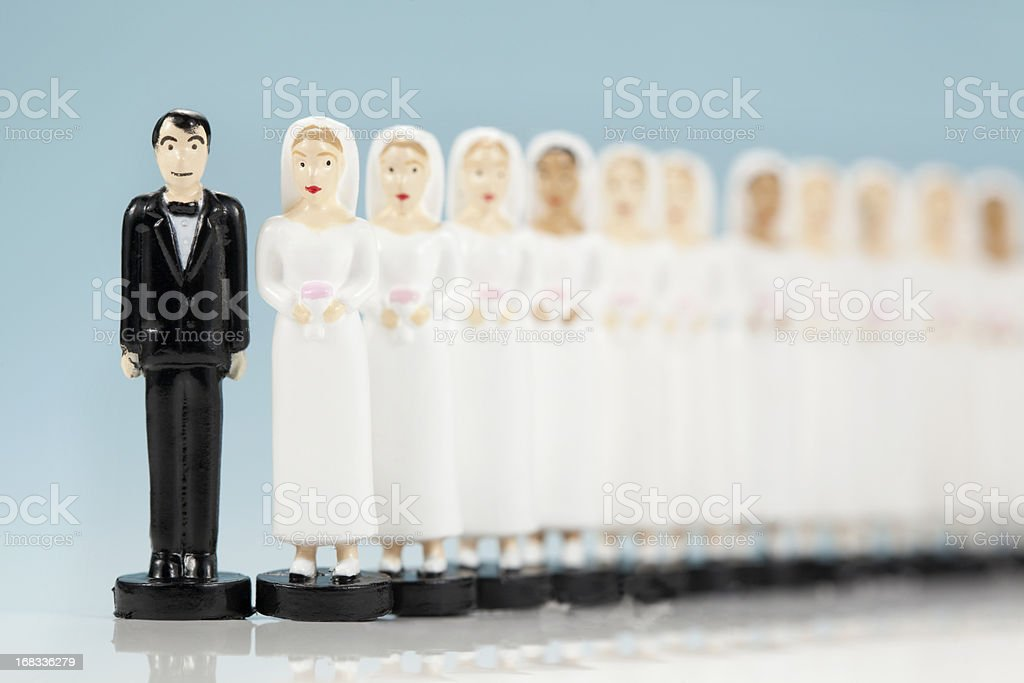 many brides stock photo