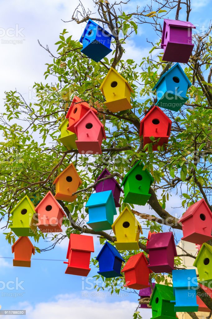Many bright colored birdhouses on a mandarin tree stock photo