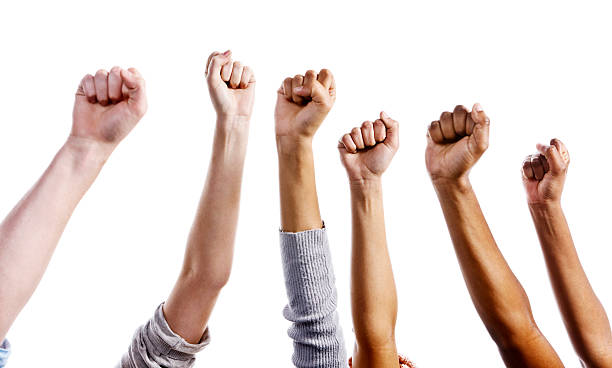 many clenched fists raised against white background - fist stock photos and pictures