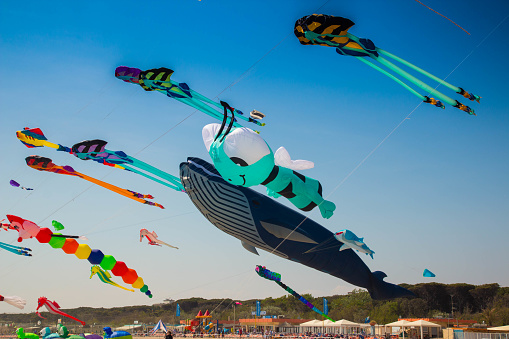 Many colorful kites in different shapes at Cervia international kite festival
