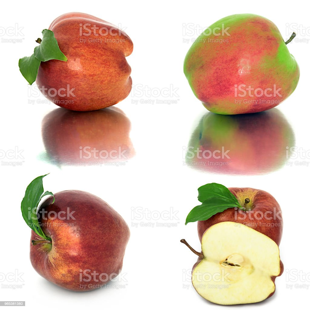 many different apples on a white background, red and yellow apples without background, many different. zbiór zdjęć royalty-free