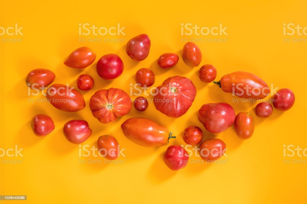 Many different red tomatoes on yellow surface. stock photo