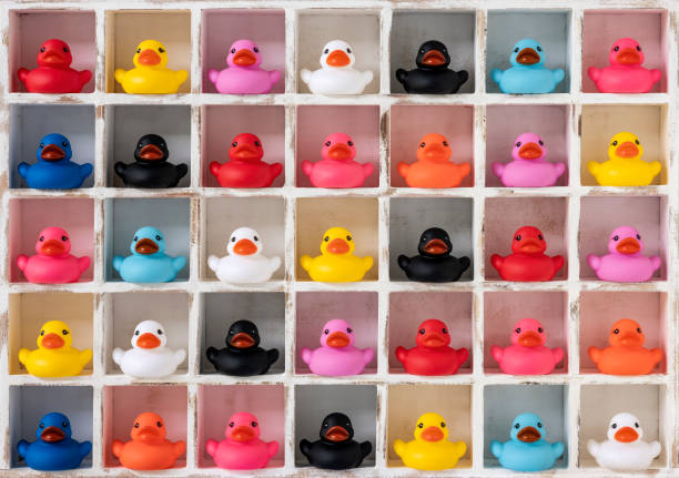 Many different vibrant colored rubber ducks in white wood pigeon hole compartments. stock photo