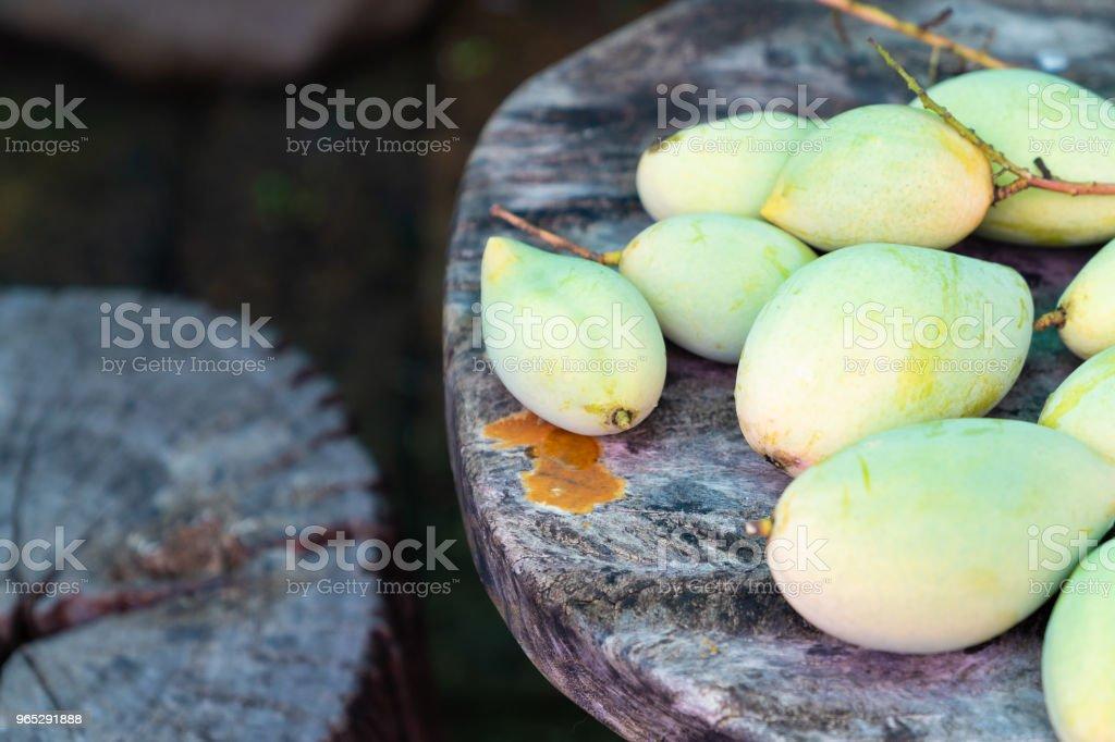 Many fresh green mango. zbiór zdjęć royalty-free