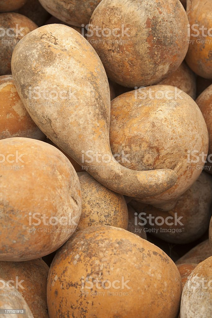 Many Gourds stock photo