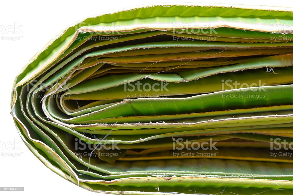 Many green banan leaf background photo libre de droits