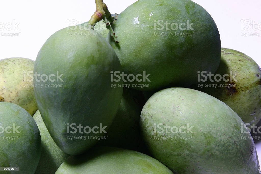 Many Green Mangoes royalty-free stock photo