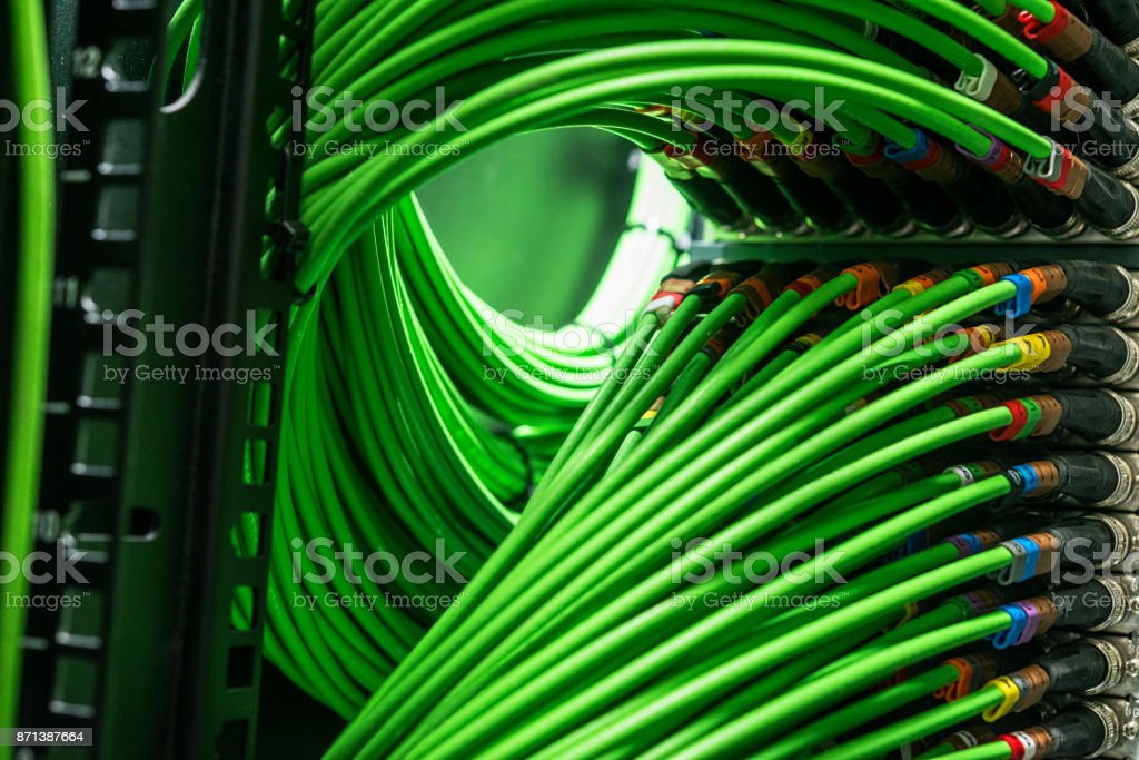 Viele grüne Netzwerkkabel mit dem Server verbunden – Foto