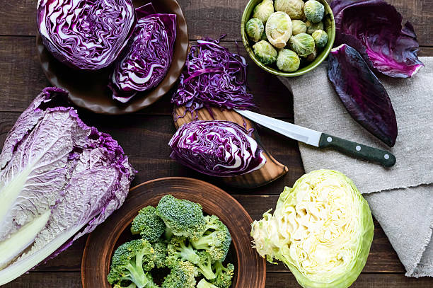 many kinds of cabbage - red, broccoli, brussels sprouts, white - kohlsalate stock-fotos und bilder