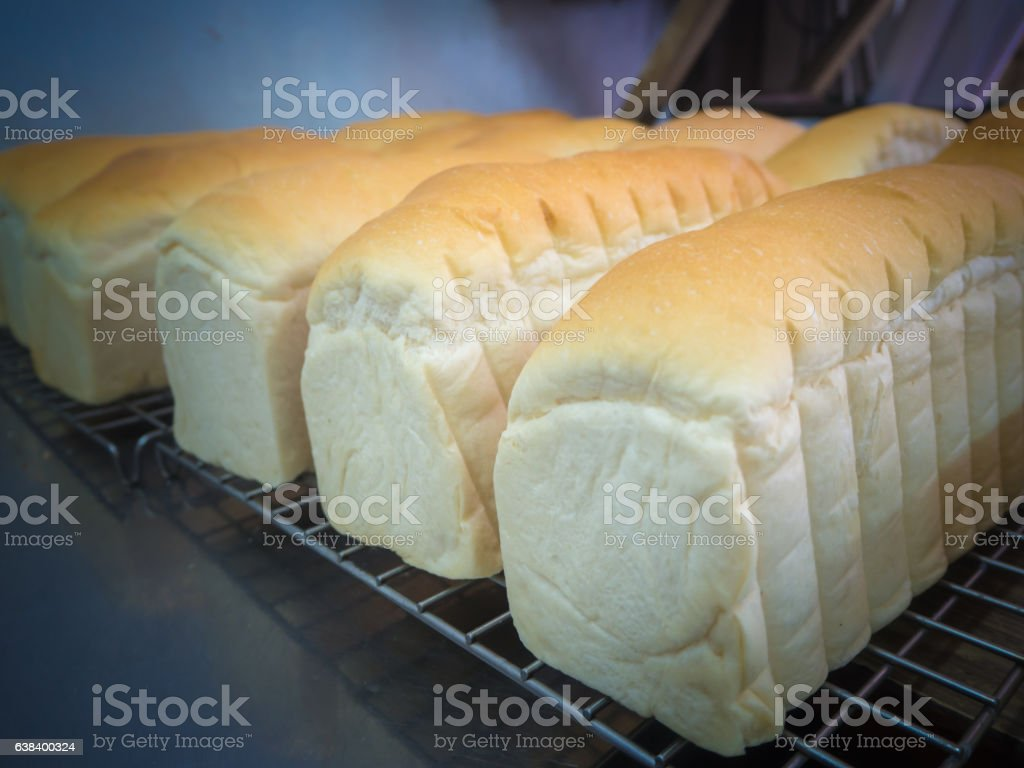 many loaf bread in factory stock photo